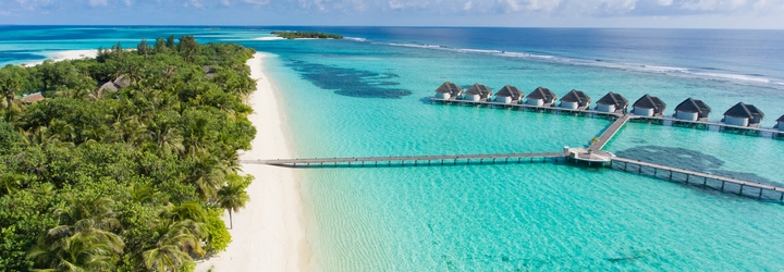 kanuhura beach maldives tutle hatching