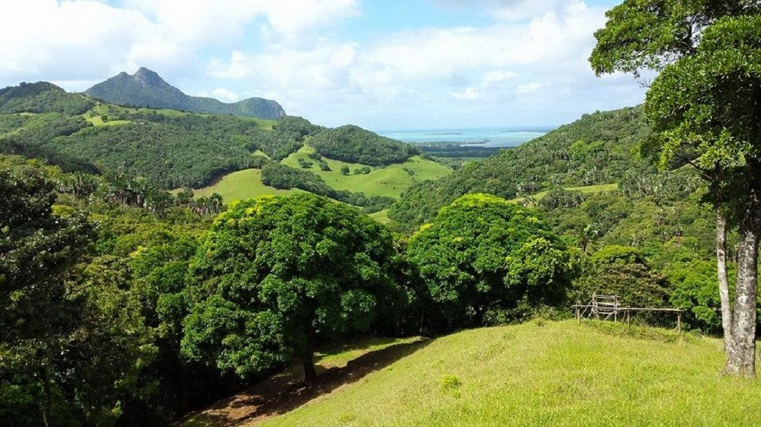 view of valley de ferney in mauritius