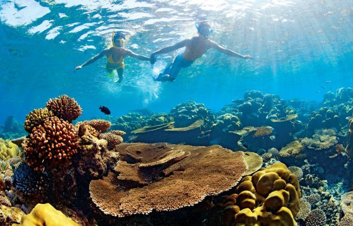couple snorkeling in lagoon of mauritius